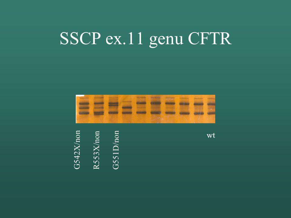 Rodokmen rodiny P. I. II. III. ΔF508 / nonΔF508 dele / non dele