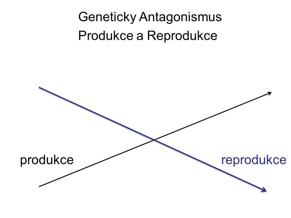produkcereprodukce Geneticky Antagonismus Produkce a Reprodukce