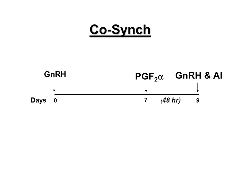 Co-Synch Days 0 7 9 ( 48 hr) PGF 2  GnRH & AI GnRH