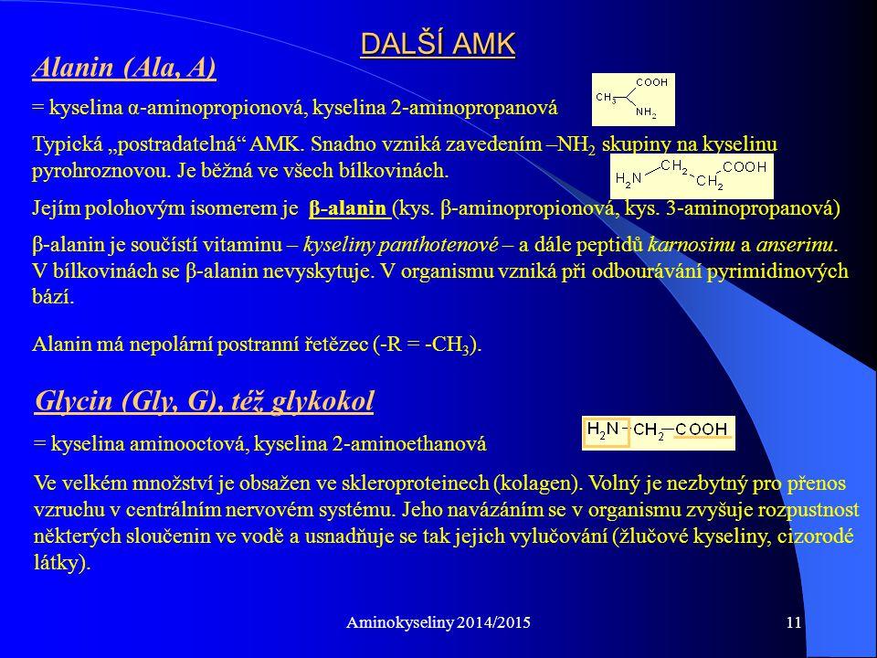 """Aminokyseliny 2014/201511 DALŠÍ AMK Alanin (Ala, A) = kyselina α-aminopropionová, kyselina 2-aminopropanová Typická """"postradatelná AMK."""
