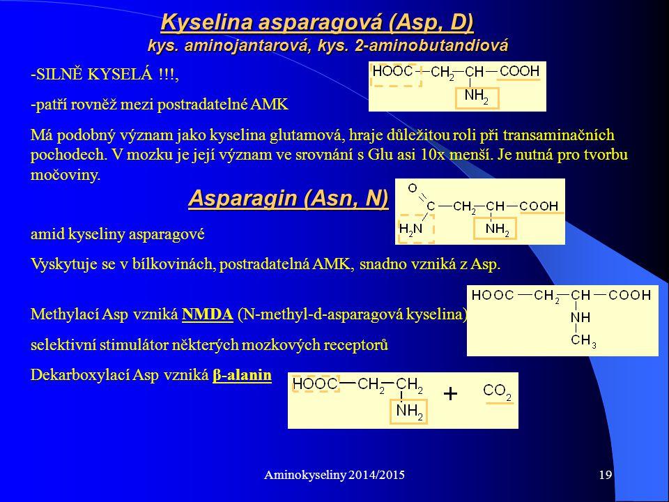 Aminokyseliny 2014/201519 amid kyseliny asparagové Vyskytuje se v bílkovinách, postradatelná AMK, snadno vzniká z Asp.