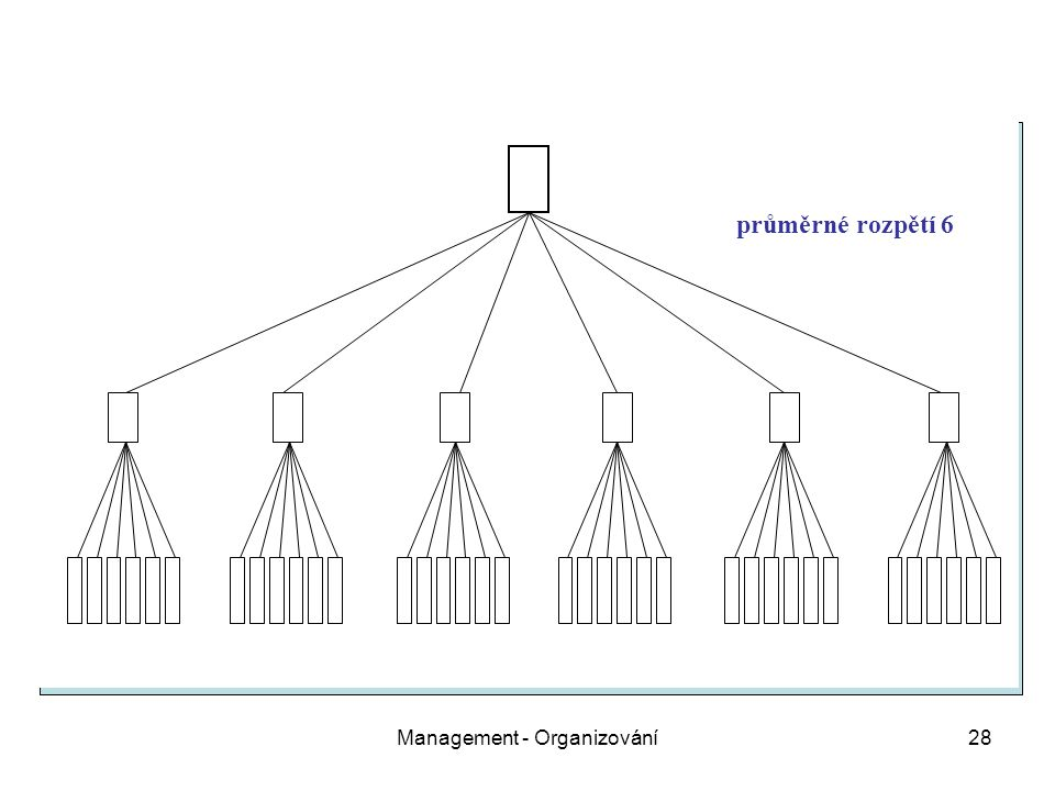 Management - Organizování28 průměrné rozpětí 6