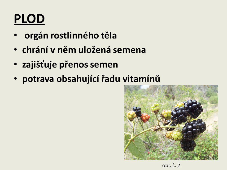 Vznik plodu přeměnou pestíku (samičího pohlavního orgánu) obr. č. 3 obr. č. 4 obr. č. 5