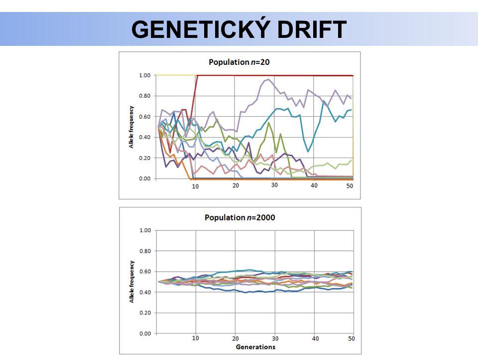 GENETICKÝ DRIFT