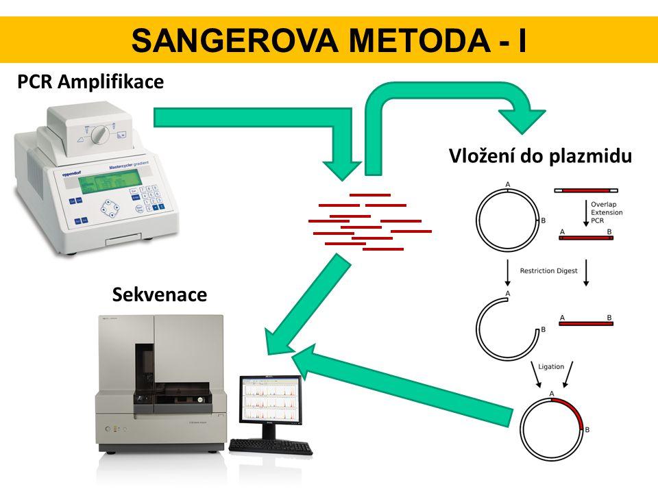 SANGEROVA METODA - I PCR Amplifikace Vložení do plazmidu Sekvenace