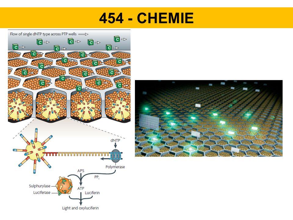 454 - CHEMIE