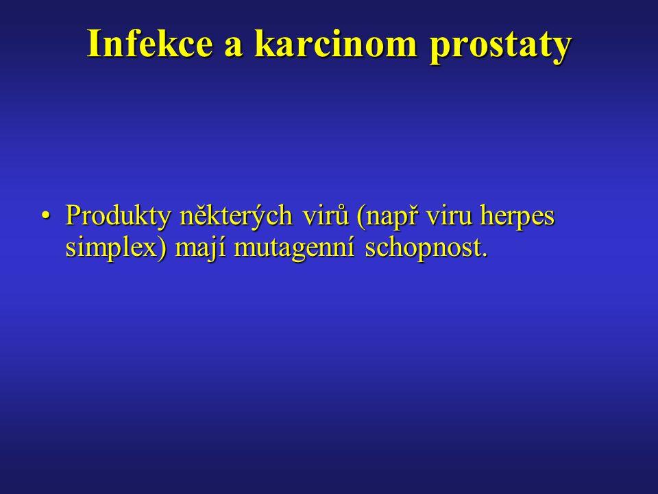 Infekce a karcinom prostaty Produkty některých virů (např viru herpes simplex) mají mutagenní schopnost.Produkty některých virů (např viru herpes simplex) mají mutagenní schopnost.