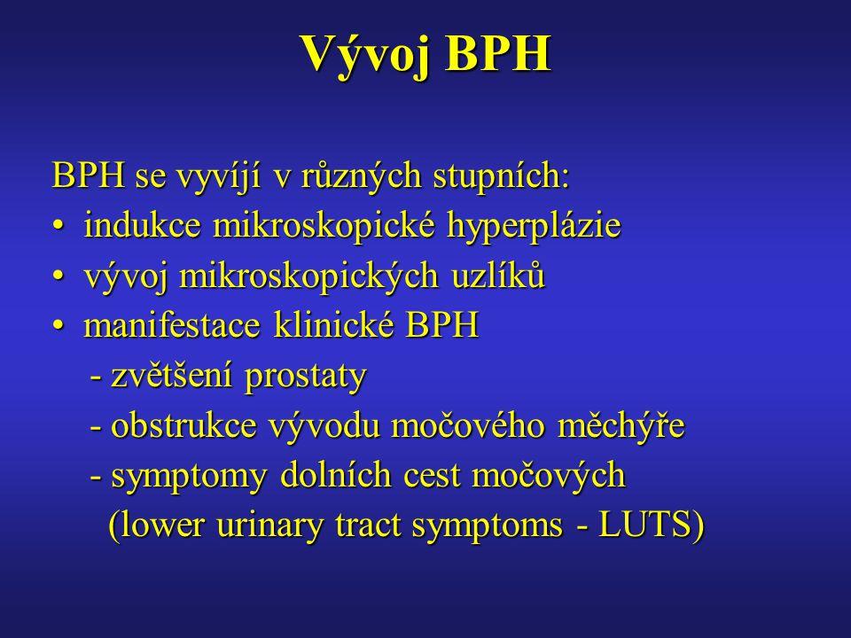 Vývoj BPH BPH se vyvíjí v různých stupních: indukce mikroskopické hyperplázieindukce mikroskopické hyperplázie vývoj mikroskopických uzlíkůvývoj mikro