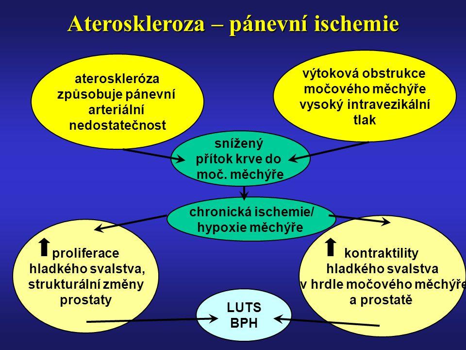 Ateroskleroza – pánevní ischemie ateroskleróza způsobuje pánevní arteriální nedostatečnost výtoková obstrukce močového měchýře vysoký intravezikální tlak snížený přítok krve do moč.