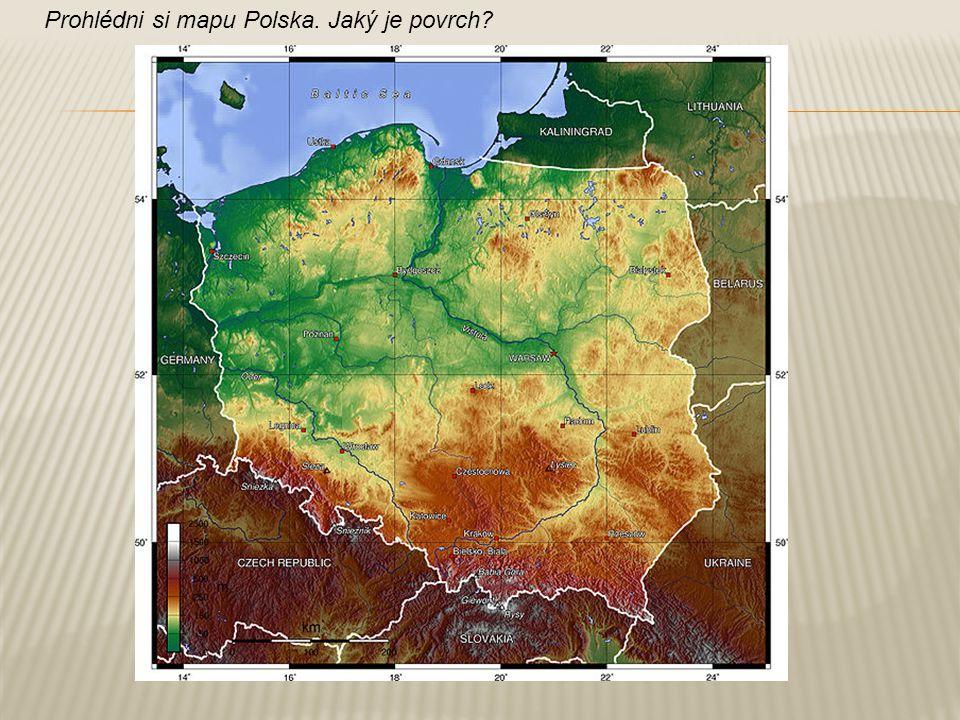 Bělověžský prales Hrad Malbork
