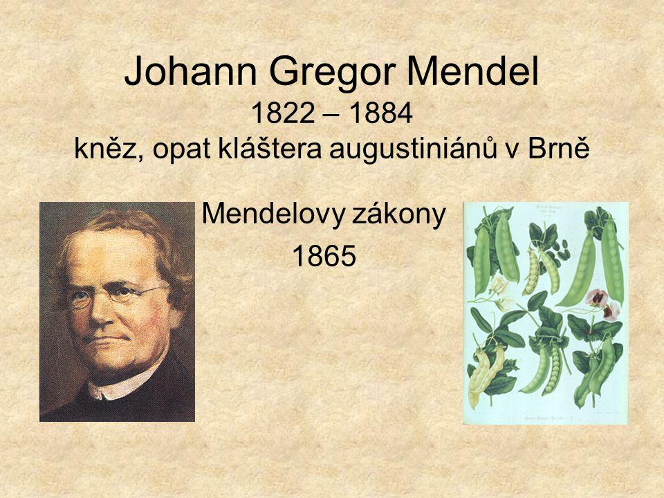 Johann Gregor Mendel 1822 – 1884 kněz, opat kláštera augustiniánů v Brně Mendelovy zákony 1865