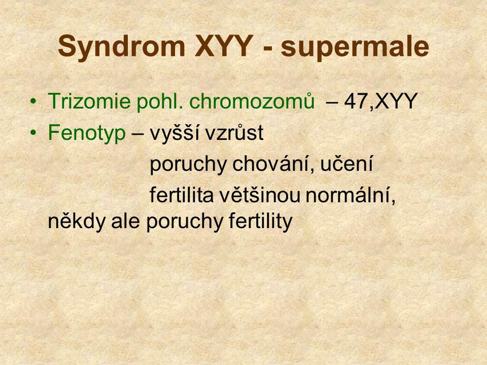 Syndrom XYY - supermale Trizomie pohl. chromozomů – 47,XYY Fenotyp – vyšší vzrůst poruchy chování, učení fertilita většinou normální, někdy ale poruch