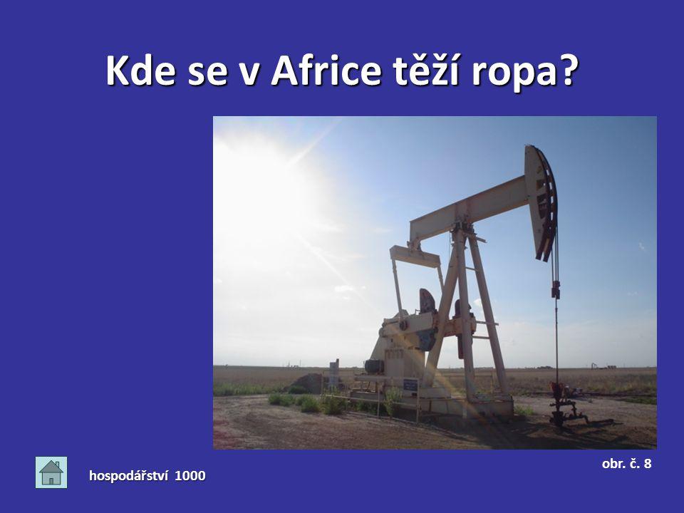 Kde se v Africe těží ropa? hospodářství 1000 obr. č. 8