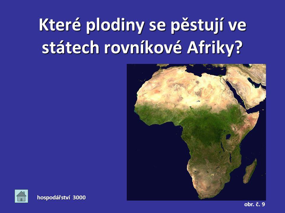 Které plodiny se pěstují ve státech rovníkové Afriky? hospodářství 3000 obr. č. 9