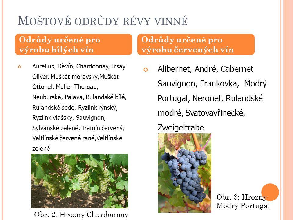 K ATEGORIE VÍNA – DLE CUKERNATOSTI MOŠTU 1.révové víno stolní 2.