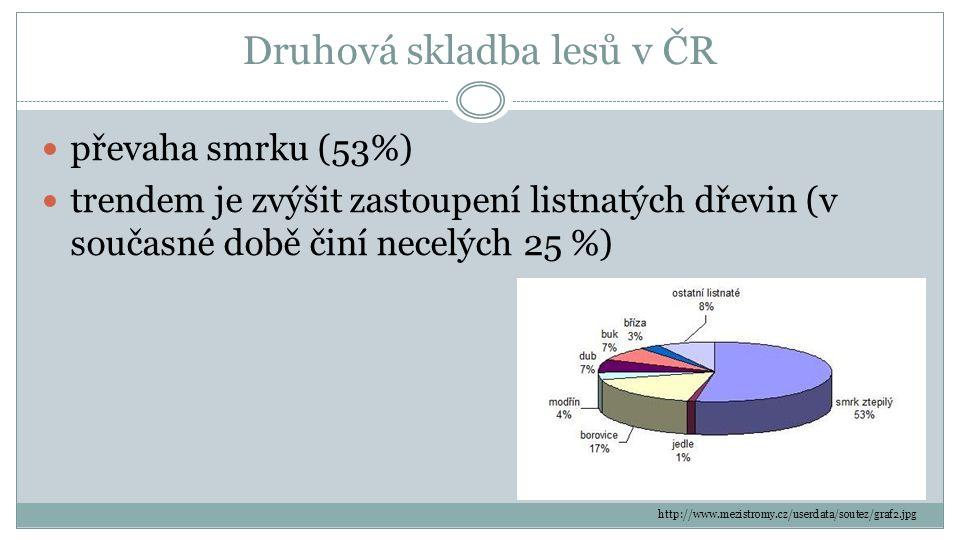 Druhová skladba lesů v ČR převaha smrku (53%) trendem je zvýšit zastoupení listnatých dřevin (v současné době činí necelých 25 %) http://www.mezistromy.cz/userdata/soutez/graf2.jpg