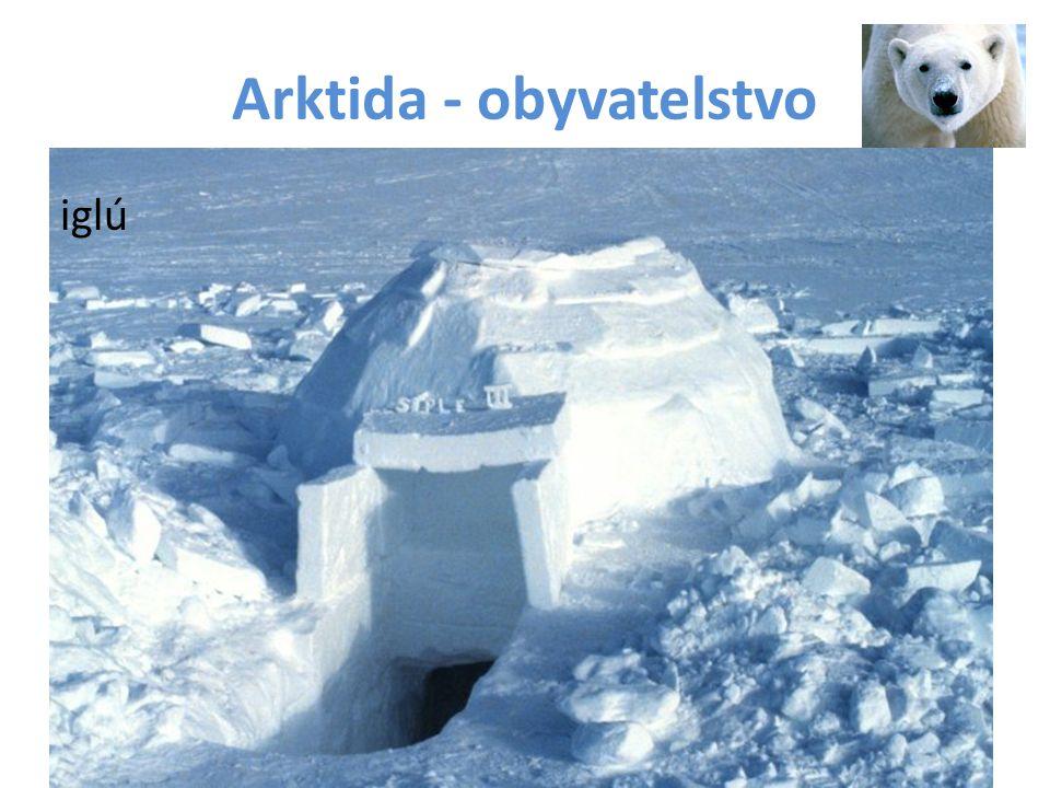 Arktida - obyvatelstvo iglú
