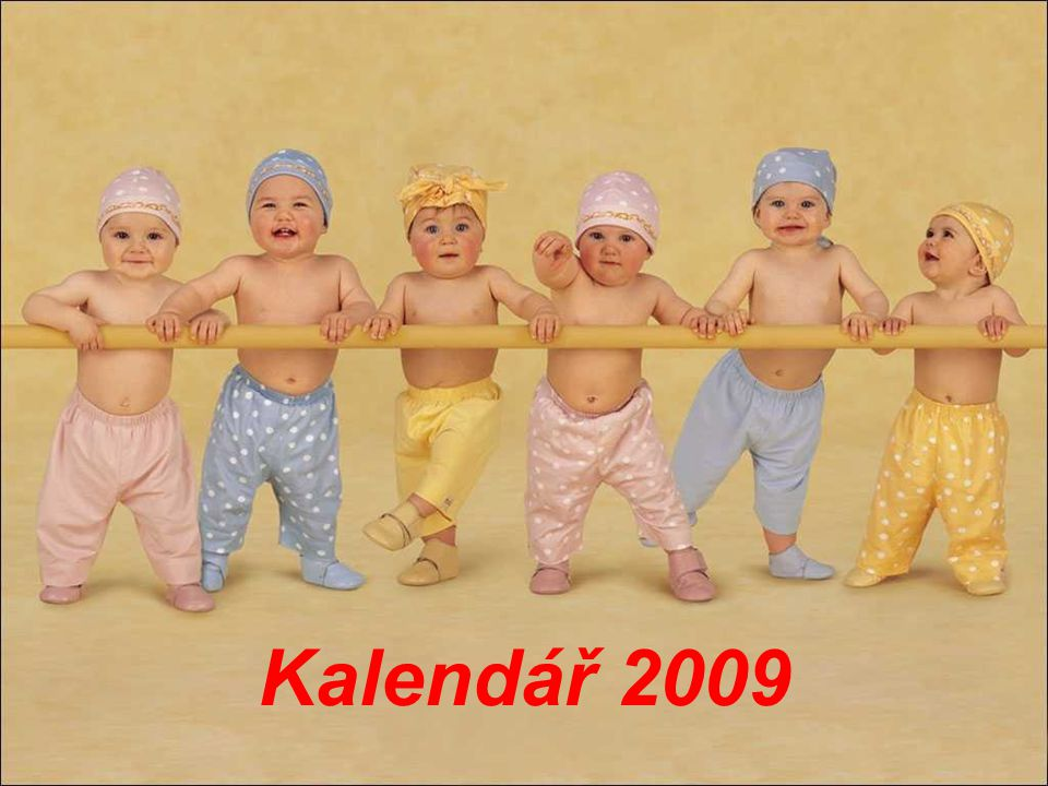 Kalendář 2009