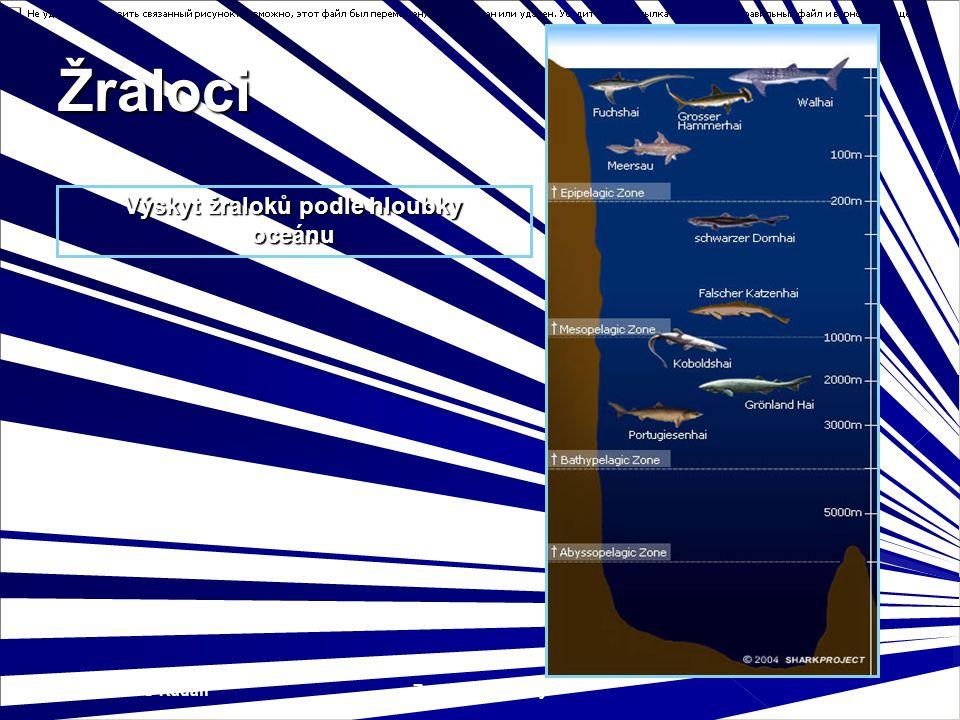 SOŠS a SOU Kadaň Zoologie - Paryby 7 Výskyt žraloků podle hloubky oceánu Žraloci