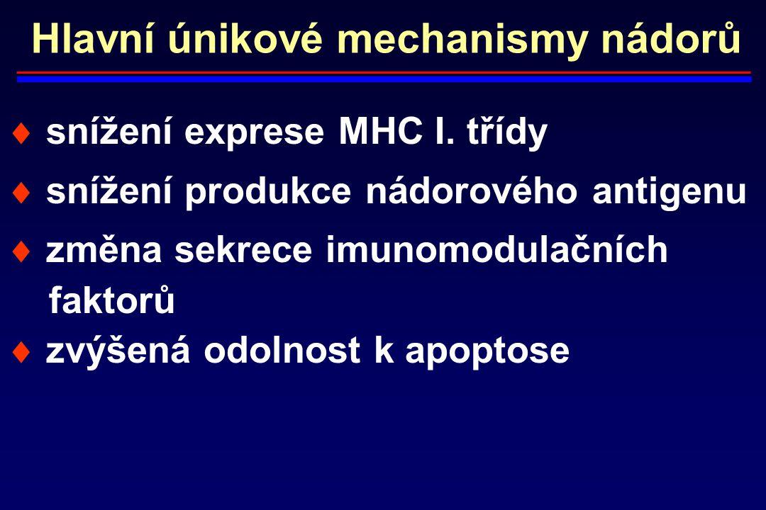 Hlavní únikové mechanismy nádorů  snížení exprese MHC I. třídy  snížení produkce nádorového antigenu  změna sekrece imunomodulačních faktorů  zvýš