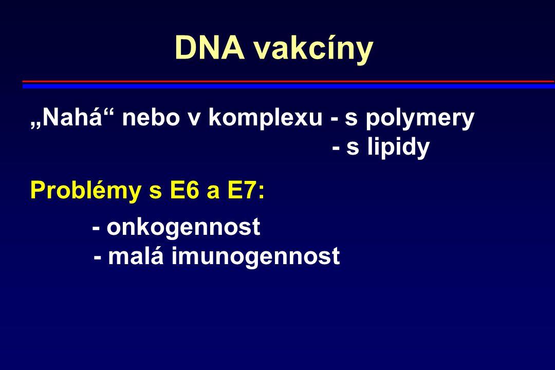 """DNA vakcíny """"Nahá"""" nebo v komplexu - s polymery - s lipidy Problémy s E6 a E7: - onkogennost - malá imunogennost"""