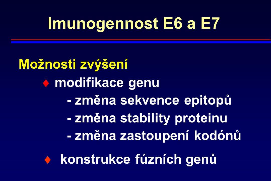 Imunogennost E6 a E7 Možnosti zvýšení  modifikace genu - změna sekvence epitopů - změna stability proteinu - změna zastoupení kodónů  konstrukce fúz