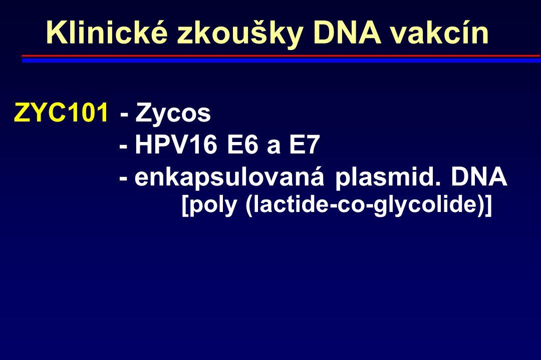 Klinické zkoušky DNA vakcín ZYC101 - Zycos - HPV16 E6 a E7 - enkapsulovaná plasmid. DNA [poly (lactide-co-glycolide)]