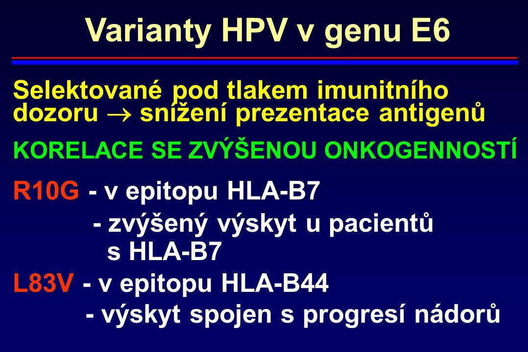 Varianty HPV v genu E6 Selektované pod tlakem imunitního dozoru  snížení prezentace antigenů KORELACE SE ZVÝŠENOU ONKOGENNOSTÍ R10G - v epitopu HLA-B