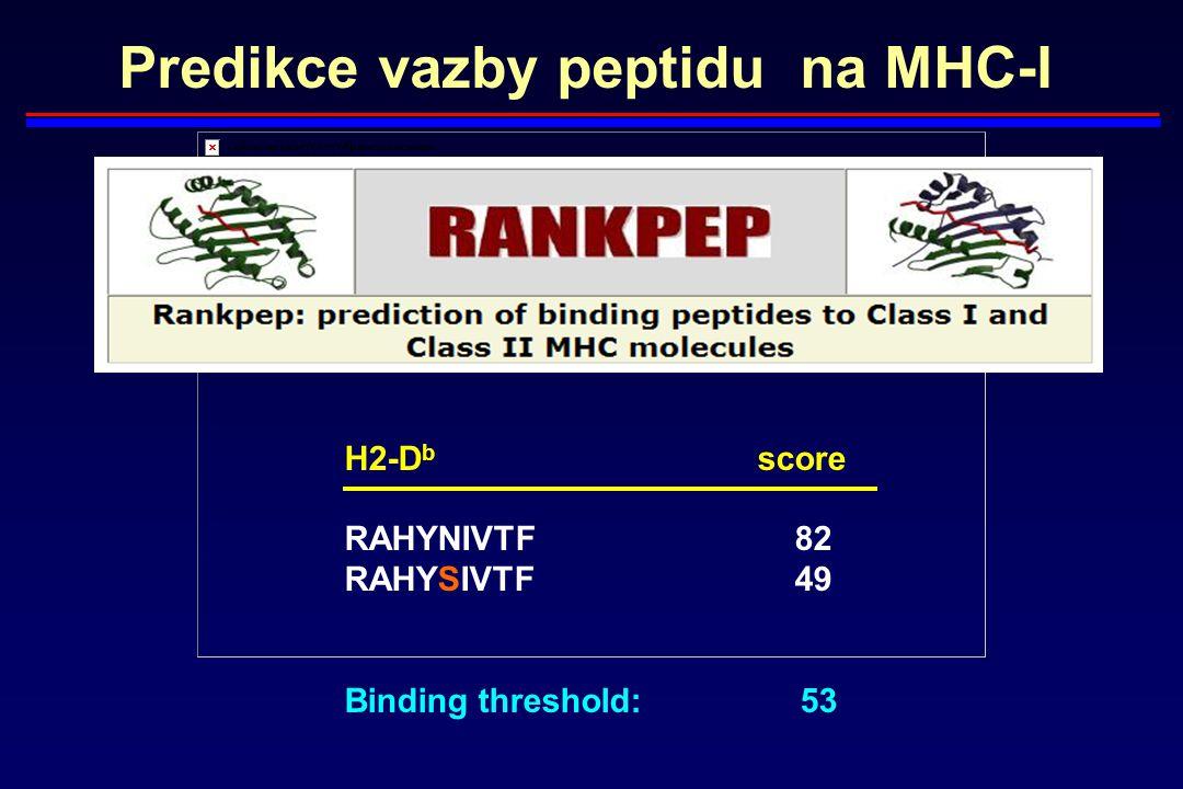 Predikce vazby peptidu na MHC-I H2-D b score RAHYNIVTF82 RAHYSIVTF49 Binding threshold: 53