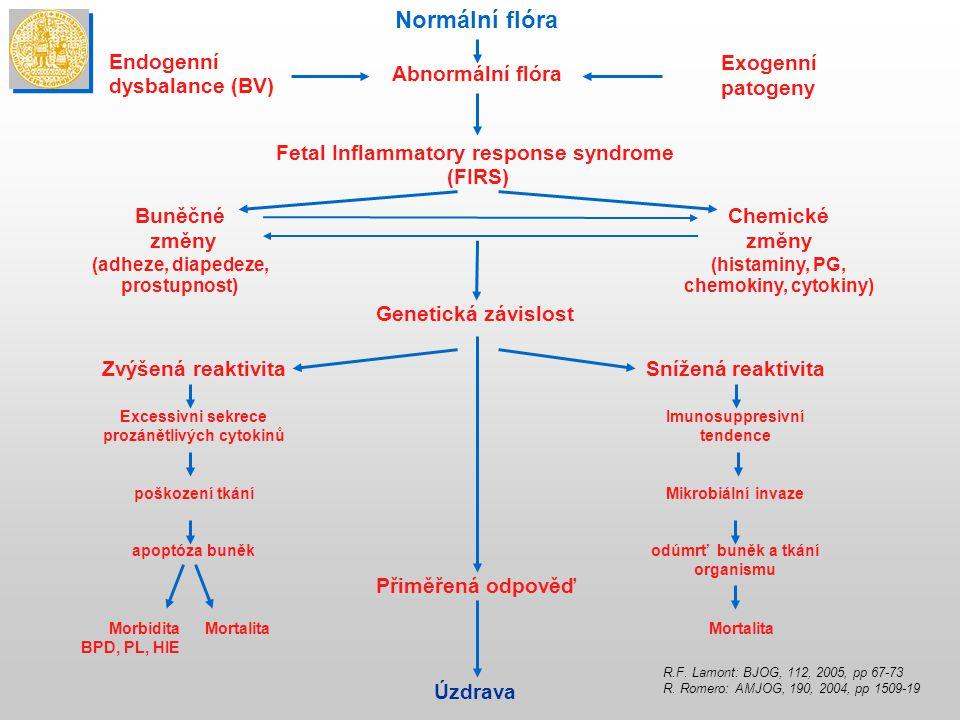Normální flóra Endogenní dysbalance (BV) Abnormální flóra Exogenní patogeny Fetal Inflammatory response syndrome (FIRS) Buněčné změny (adheze, diape