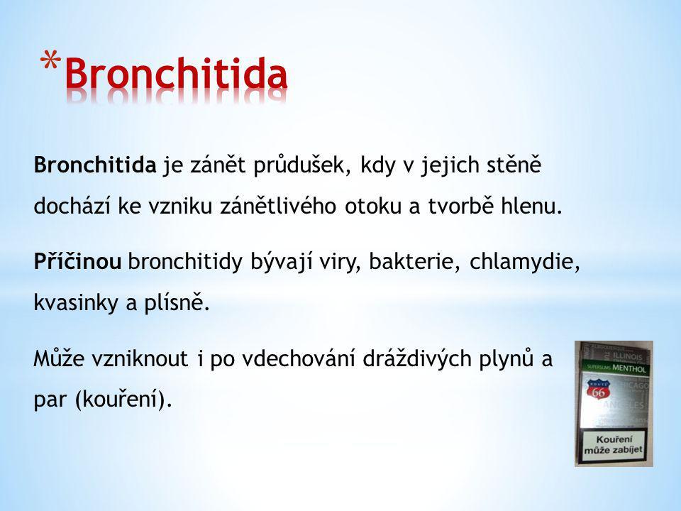 Bronchitida je zánět průdušek, kdy v jejich stěně dochází ke vzniku zánětlivého otoku a tvorbě hlenu.