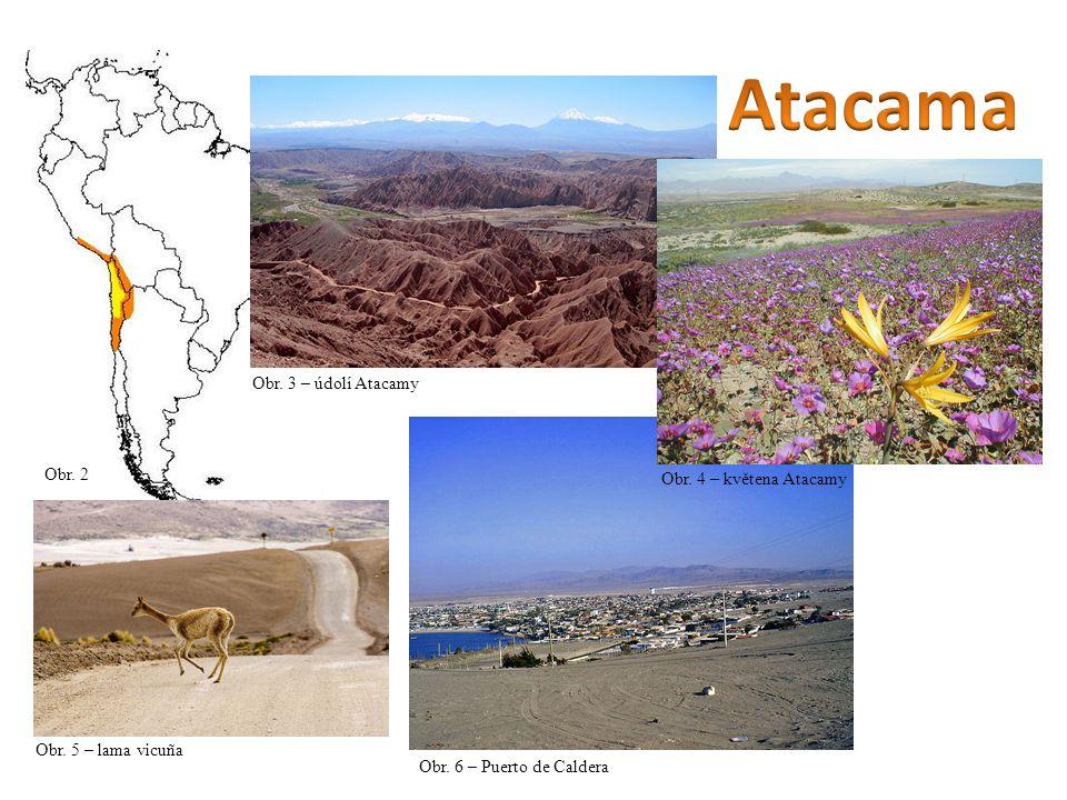 Obr. 2 Obr. 3 – údolí Atacamy Obr. 5 – lama vicuña Obr. 6 – Puerto de Caldera Obr. 4 – květena Atacamy