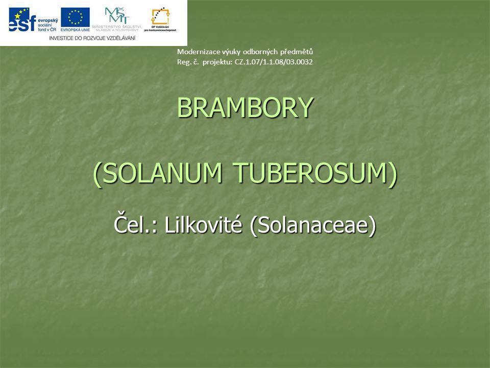 BRAMBORY (SOLANUM TUBEROSUM) Čel.: Lilkovité (Solanaceae) Modernizace výuky odborných předmětů Reg. č. projektu: CZ.1.07/1.1.08/03.0032