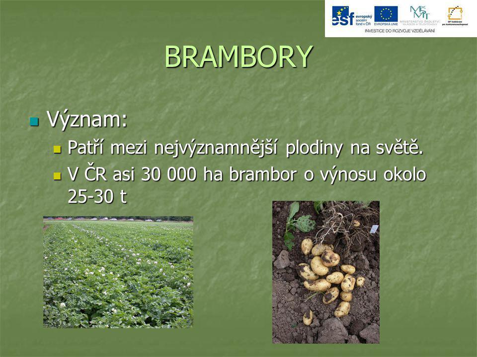BRAMBORY Význam: Význam: Patří mezi nejvýznamnější plodiny na světě. Patří mezi nejvýznamnější plodiny na světě. V ČR asi 30 000 ha brambor o výnosu o