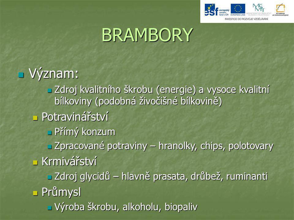 BRAMBORY Význam: Význam: Zdroj kvalitního škrobu (energie) a vysoce kvalitní bílkoviny (podobná živočišné bílkovině) Zdroj kvalitního škrobu (energie)