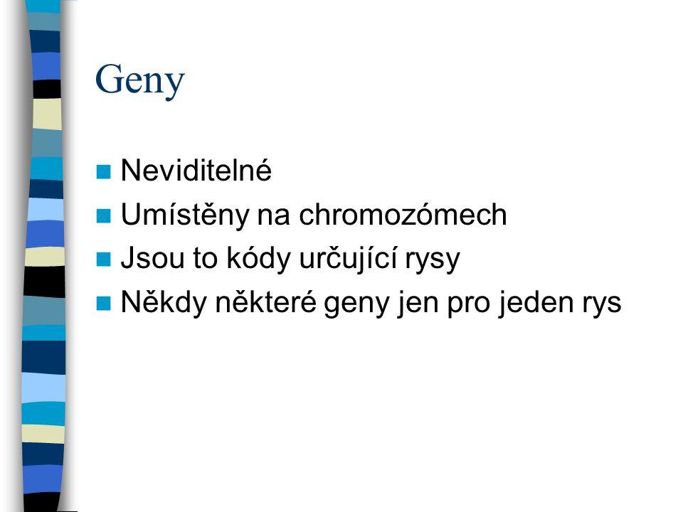 Genotyp versus phenotyp Genotype = Jak jsou poutány v genech Phenotype = Jak se genotyp projevuje sám, když je umístěn v okolním prostředí Příklad : Jestliže je genetický kód pro dlouhé tělo, ale organismus nemá dostatek jídla, pak zůstane krátké ;
