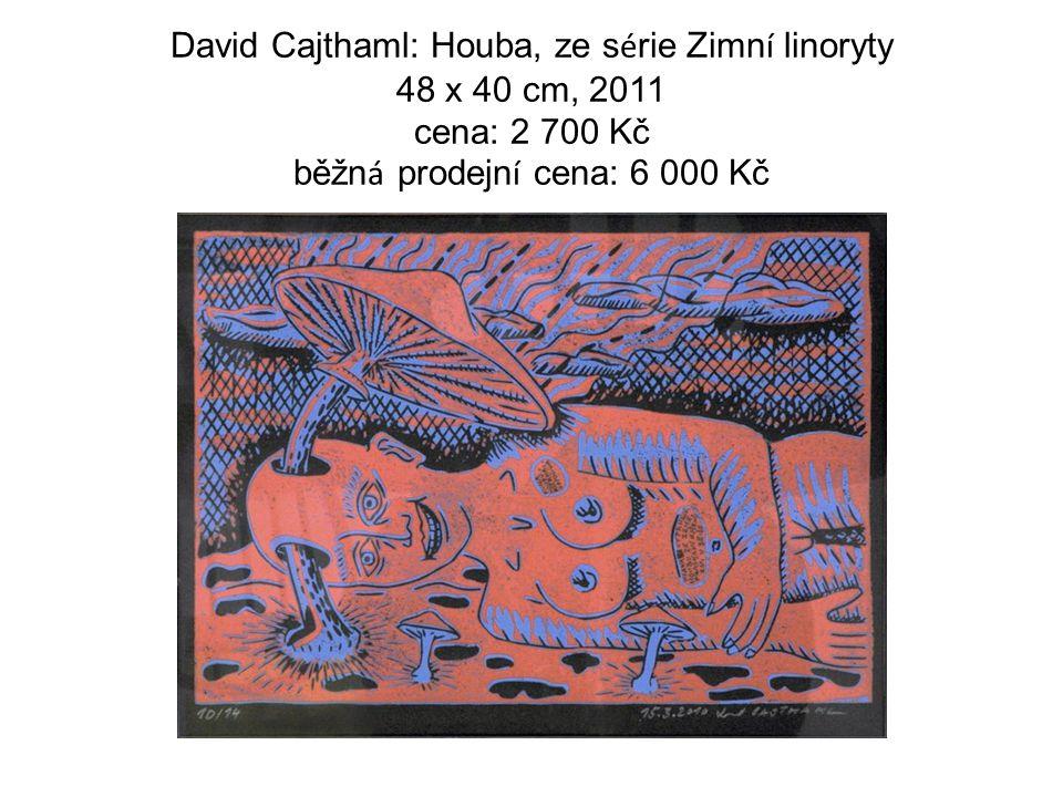 David Cajthaml: Houba, ze s é rie Zimn í linoryty 48 x 40 cm, 2011 cena: 2 700 Kč běžn á prodejn í cena: 6 000 Kč