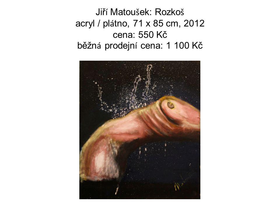 Jiř í Matou š ek: Rozko š acryl / pl á tno, 71 x 85 cm, 2012 cena: 550 Kč běžn á prodejn í cena: 1 100 Kč