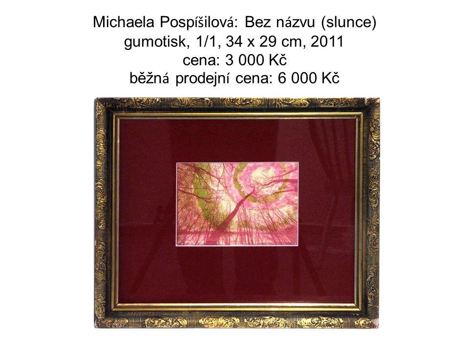 Michaela Posp íš ilov á : Bez n á zvu (slunce) gumotisk, 1/1, 34 x 29 cm, 2011 cena: 3 000 Kč běžn á prodejn í cena: 6 000 Kč