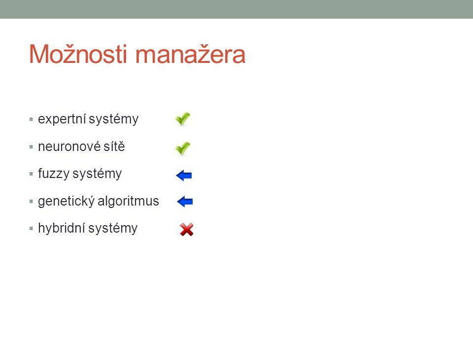 Možnosti manažera  expertní systémy  neuronové sítě  fuzzy systémy  genetický algoritmus  hybridní systémy