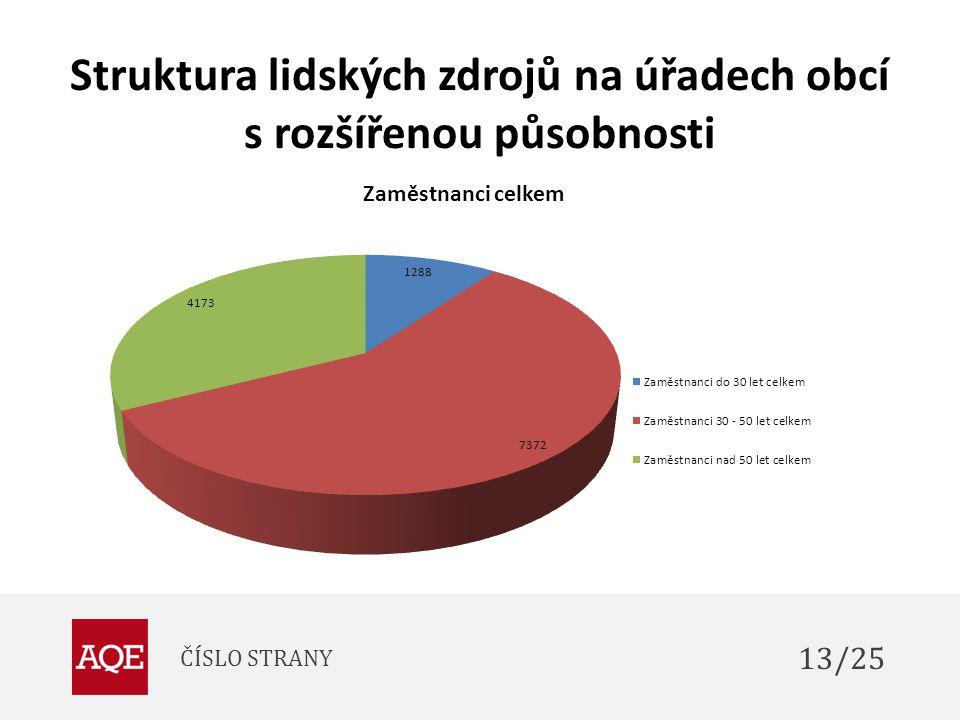 Struktura lidských zdrojů na úřadech obcí s rozšířenou působnosti ČÍSLO STRANY 13/25