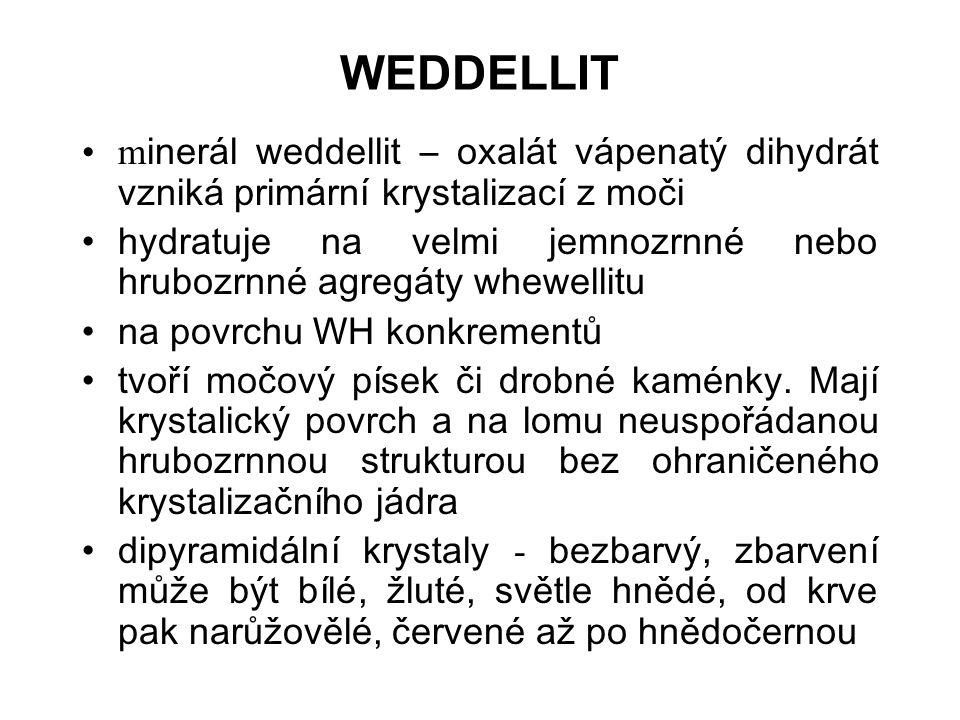 WEDDELLIT m inerál weddellit – oxalát vápenatý dihydrát vzniká primární krystalizací z moči hydratuje na velmi jemnozrnné nebo hrubozrnné agregáty whewellitu na povrchu WH konkrementů tvoří močový písek či drobné kaménky.