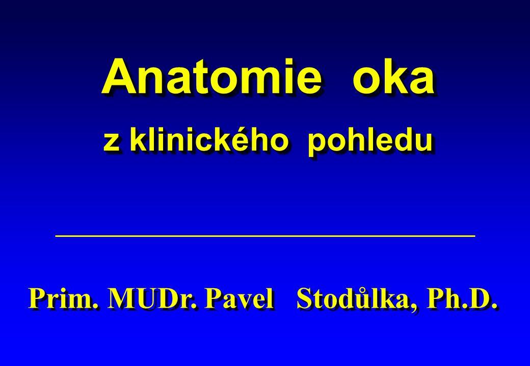 Anatomie oka z klinického pohledu Anatomie oka z klinického pohledu Prim. MUDr. Pavel Stodůlka, Ph.D.