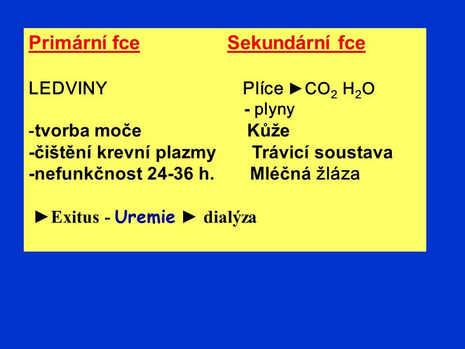 Primární fce Sekundární fce LEDVINY Plíce ►CO 2 H 2 O - plyny - tvorba moče Kůže -čištění krevní plazmy Trávicí soustava -nefunkčnost 24-36 h. Mléčná