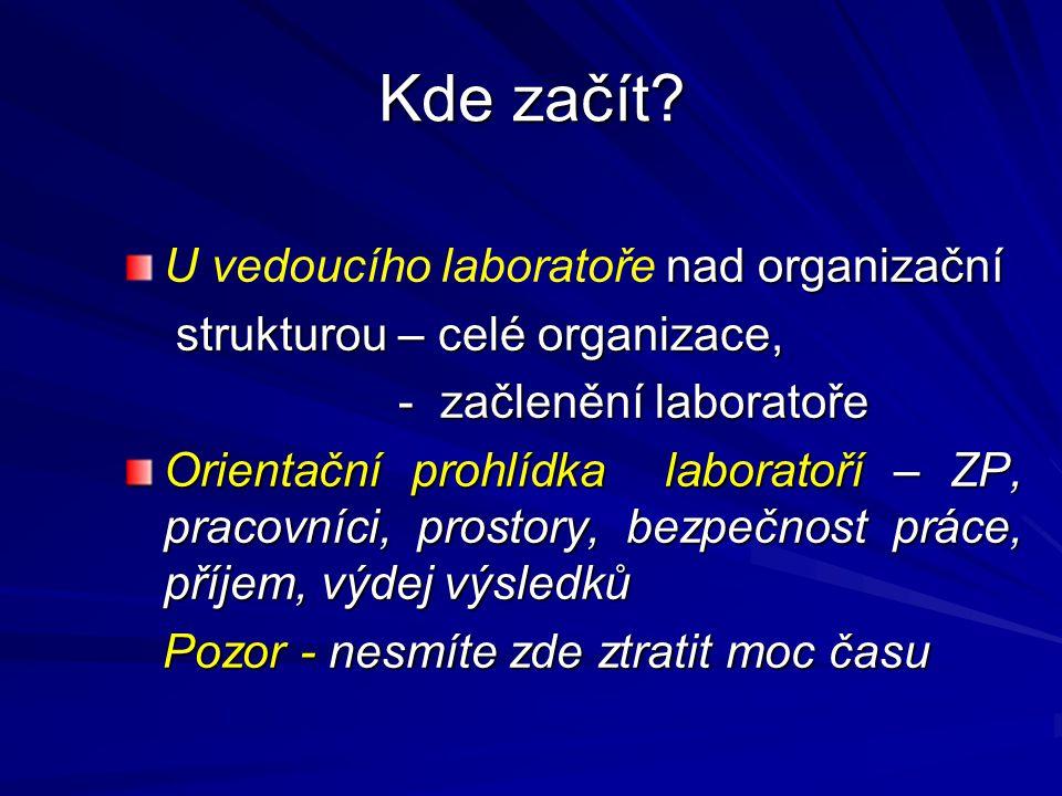 Kde začít? nad organizační U vedoucího laboratoře nad organizační strukturou – celé organizace, strukturou – celé organizace, - začlenění laboratoře -