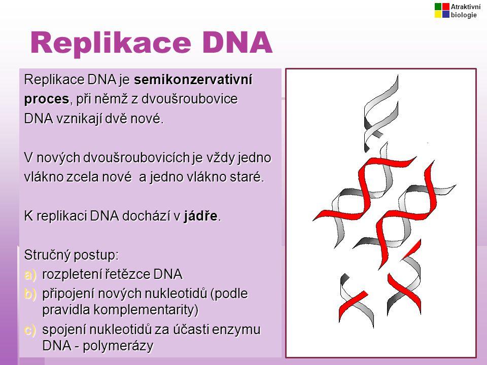 Replikace DNA Replikace DNA je semikonzervativní proces, při němž z dvoušroubovice DNA vznikají dvě nové. V nových dvoušroubovicích je vždy jedno vlák