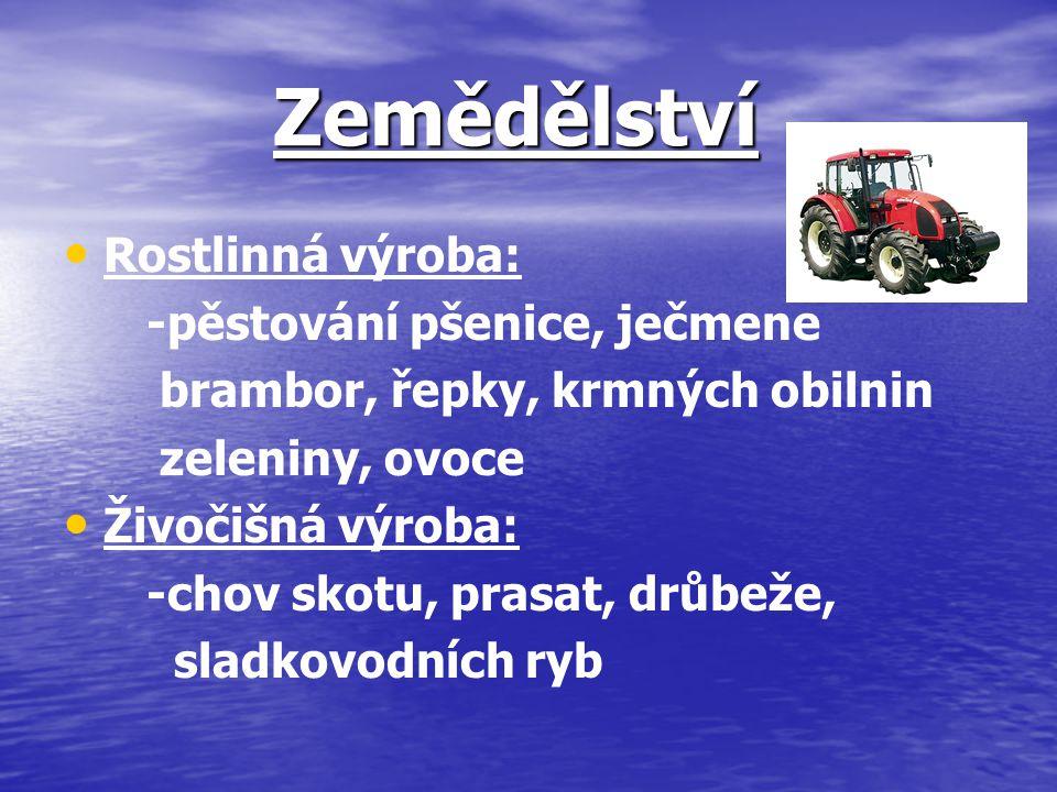 Zemědělství Rostlinná výroba: -pěstování pšenice, ječmene brambor, řepky, krmných obilnin zeleniny, ovoce Živočišná výroba: -chov skotu, prasat, drůbe