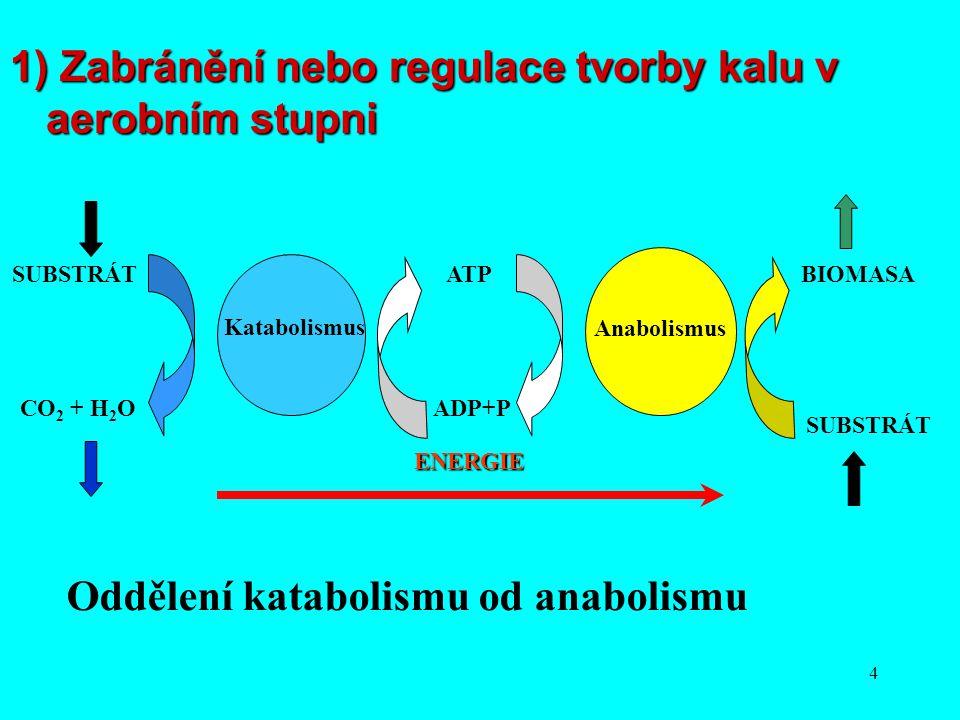5 Odpřažení katabolismu od anabolismu  Odpřažení katabolismu od anabolismu  Chemické odpřahovače oxidativní fosforylace  Oddělení metabolismu při vysokém poměru S 0 /X 0 Metabolismus při limitaci nutriety  Metabolismus při limitaci nutriety  Modifikace aktivačního procesu začleněním anaerobního stupně  Koncentrace a stáří kalu  Membránové bioreaktory Buněčná lyze a kryptický růst  Buněčná lyze a kryptický růst  Desintegrace buněk  Ozonizace Predace  Predace