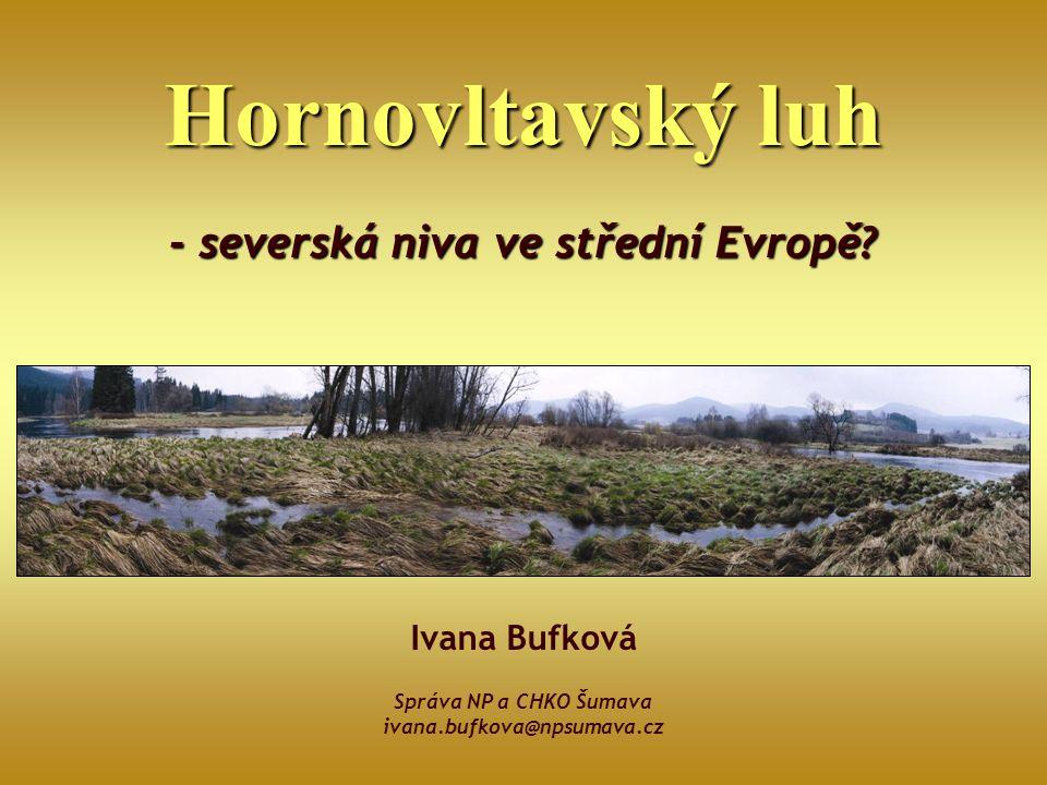 Hornovltavský luh - severská niva ve střední Evropě? Ivana Bufková Správa NP a CHKO Šumava ivana.bufkova@npsumava.cz