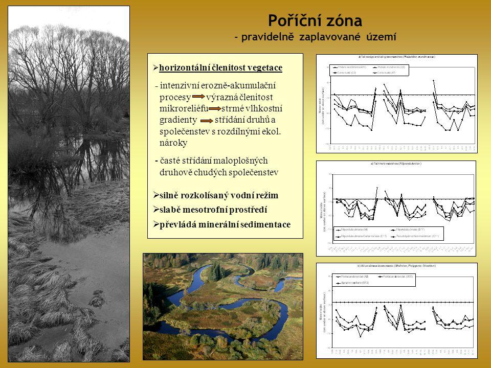 Poříční zóna - pravidelně zaplavované území  horizontální členitost vegetace - intenzivní erozně-akumulační procesy výrazná členitost mikroreliéfu st